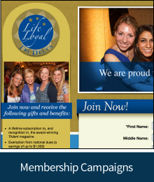 Image of MainSpring membership campaign sample linking to examples and results